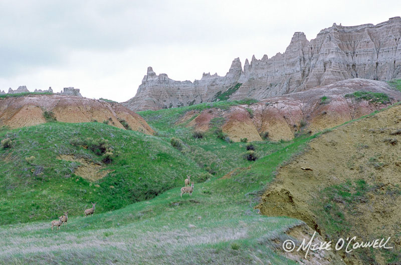 Badlands Stormscape